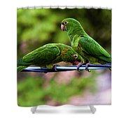 Parakeet Couple Shower Curtain