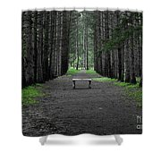 Parallel Pines Shower Curtain