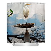 Parallel Worlds Shower Curtain
