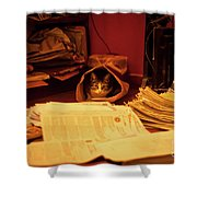 Parcel Cat Shower Curtain