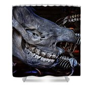 Paris Gallery Of Paleontology 2 Shower Curtain