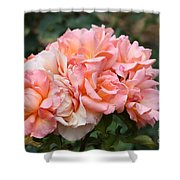 Paris Garden Roses Shower Curtain