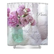 Paris Peonies Parisian Pink Peonies Pink Aqua French Decor Paris Floral Wall Art Home Decor
