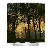 In The Park . Shower Curtain