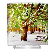 Park In Winter Shower Curtain