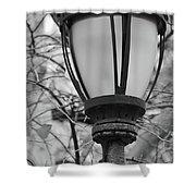 Park Light Shower Curtain