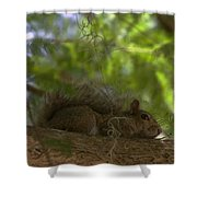 Park Ranger Shower Curtain by Sean Green