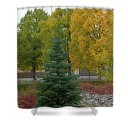Park Trees Shower Curtain
