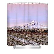 Parkdale Dawn Shower Curtain