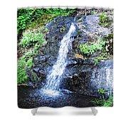 Parker Creek Falls Shower Curtain