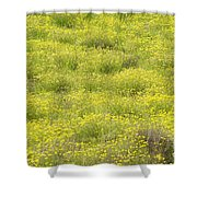 Parker Ranch Field Of Yellow Shower Curtain