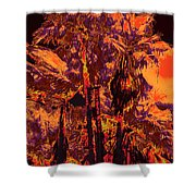 Parking Lot Palms 1 11 Shower Curtain