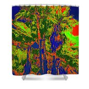 Parking Lot Palms 1 15 Shower Curtain