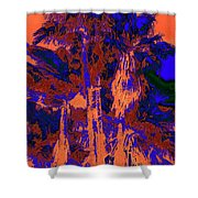 Parking Lot Palms 1 18 Shower Curtain
