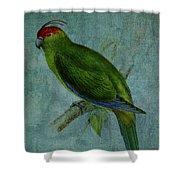 Parrot Fashion Shower Curtain