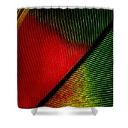 Parrot Feather Macro Shower Curtain