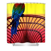 Parrot Sitting On Chair Shower Curtain