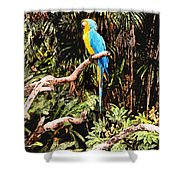 Parrot Shower Curtain