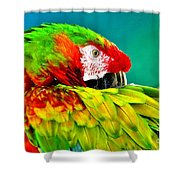 Parrot Time 2 Shower Curtain