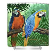 Parrots In Light And Shade Shower Curtain