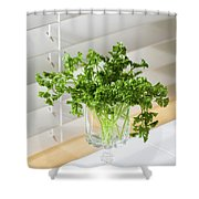 Parsley Bouquet Shower Curtain