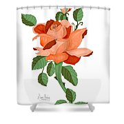 Party Colored Rose Shower Curtain