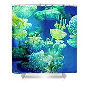 Party In The Lagoon Shower Curtain