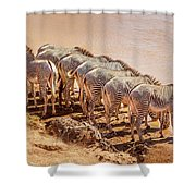 Party Of Eight  6973 Shower Curtain