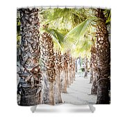 Pass Of Palms Shower Curtain
