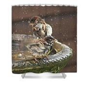 Pass The Towel Please: A House Sparrow Shower Curtain