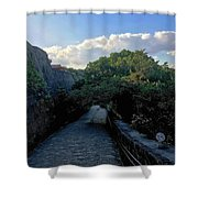 Passage To Beauty Shower Curtain