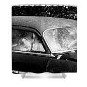 Passenger Shower Curtain