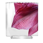 Passing Beauty Shower Curtain