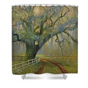 Passing Spring Shower Shower Curtain