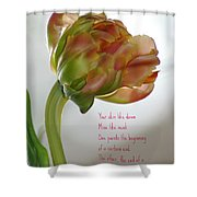 Passing  Time Shower Curtain