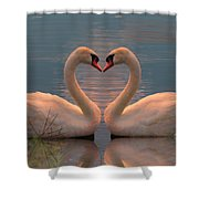 Passion At Sunset Shower Curtain