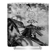 Passion Flower Black And White Shower Curtain