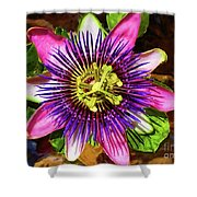 Passion Flower Shower Curtain by Mariola Bitner