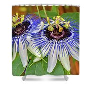 Passion Flower Power Shower Curtain