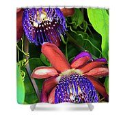 Passion Flower Ver. 12 Shower Curtain