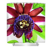 Passion Flower Ver. 5 Shower Curtain