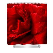Passion For Flowers. Sensual Petals Shower Curtain