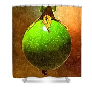 Great Passion Fruit Shower Curtain