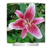 Passion Pink Shower Curtain