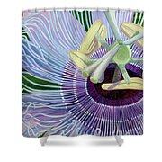 Passionflower Vine Shower Curtain