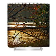 Past Consciousness Shower Curtain