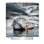 Past Glory Shower Curtain