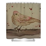 Pastel Bird Shower Curtain