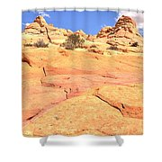 Pastel Checkerboard Shower Curtain