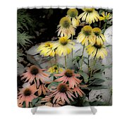 Pastel Cone Flowers Shower Curtain